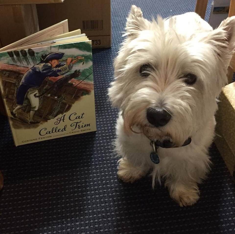 Book Signing April 13 – Collins Booksellers Croydon – A Cat Called Trim – 12 midday